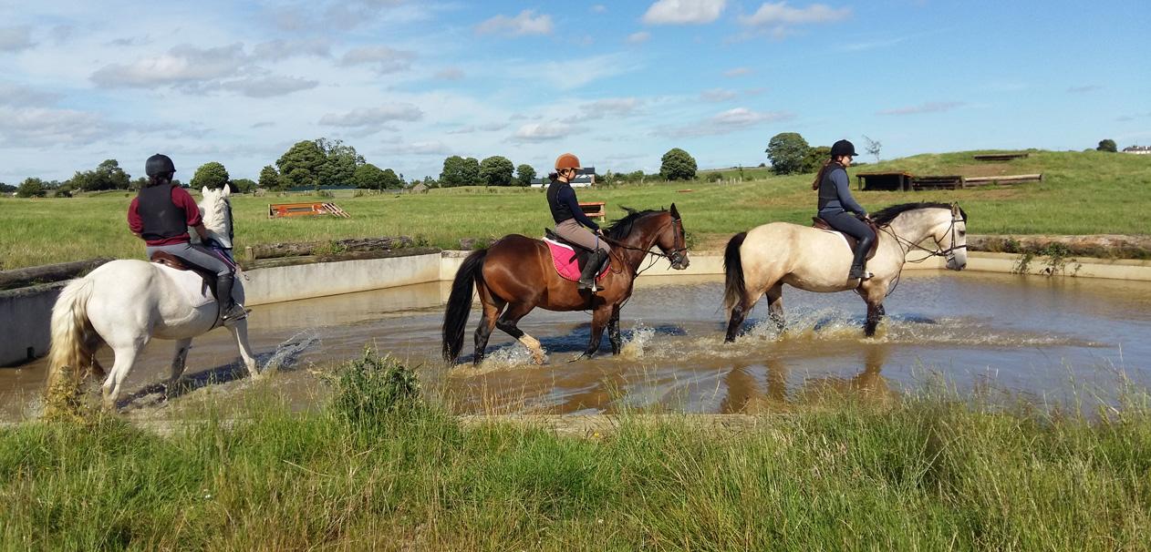 Slider 9 – Deerpark Equestrian